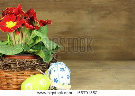 Primrose with easter eggs on wooden background