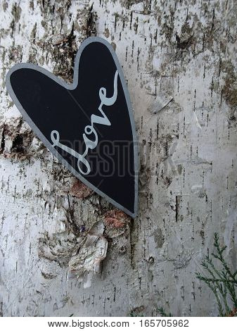 Close-up of black heart shape with the word, Love, written in silver calligraphy, rests against a birch tree.  Copy space, vertical.