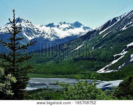 snow capped mountains with trees and water in the foreground. Stunning view of Alaska mountains on a sunny day during a hike.