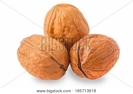 Three walnuts isolated on white background for packaging.