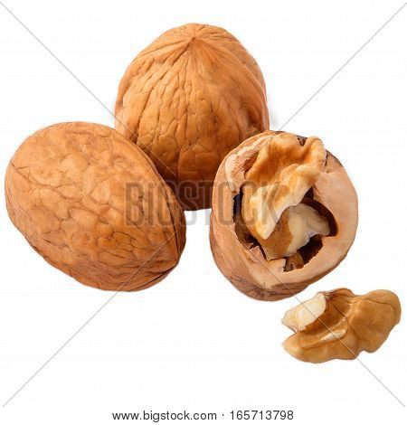 Walnuts in closeup on white background. two whole and pieces.