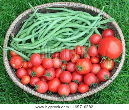 Basket of Green Beans and Cherry Tomatoes