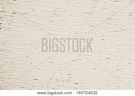 Brown sepin plywood plank floor painted. Grey top table old wooden texture background. Beech tone wall house. Gray desk pattern top view. White stage floor white hardwood surfaces weathered.
