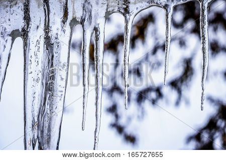 Icicles hanging from the Roof on a Cols Winter Day