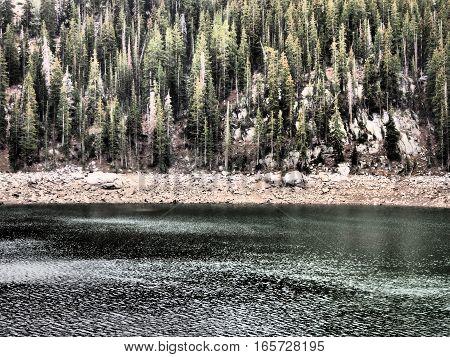 Nature postcard of pine trees and lake.