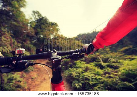 people riding mountain bike on forest trail