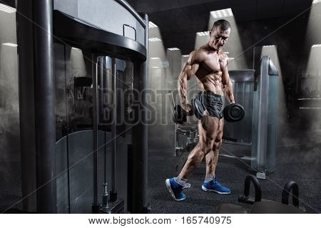 Handsome power athletic bodybuilder in training pumping up muscles with dumbbell in gym. Strong bodybuilder with perfect abs, shoulders, biceps, triceps and chest