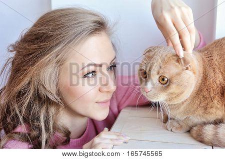 Beautiful young woman with domestic cat Scottish Fold