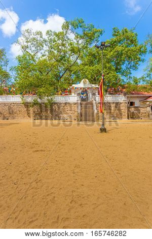 Anuradhapura Jaya Sri Maha Bodhi Tree Field V