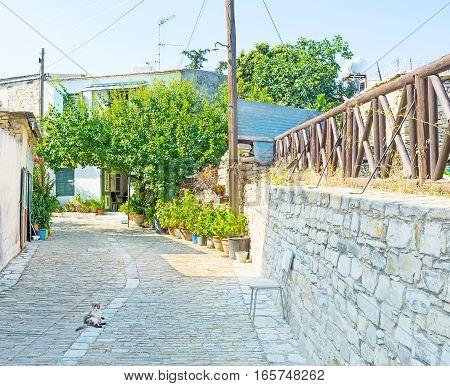 The Quiet Village Street