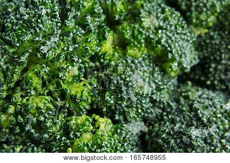 Wet fresh green broccoli with water drops closeup as background. Healthy vitamin food.