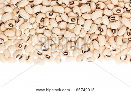 Border of white kidney beans black eye closeup with copy space on white background. Isolated. Healthy protein food.