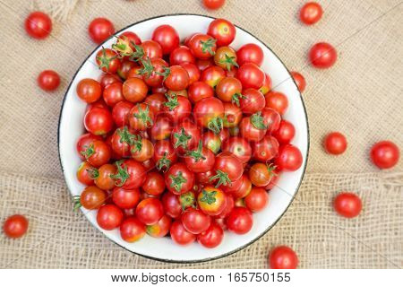 harvest of cherry tomatoes placed in a bowl