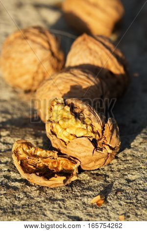Close up of walnuts full and broken. Pile of dried walnuts