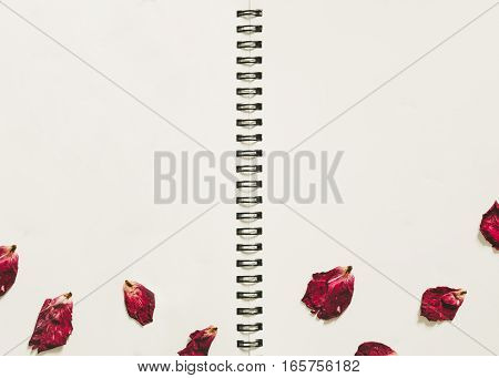 Press dried rose flower petals, on white paper album photo, with copy space