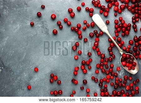 Fresh cranberry or cowberry background top view