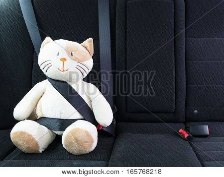 Plush toy cat fastened with seatbelt in the back seat of a car, safety on the road. Protection concept