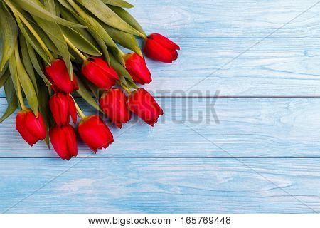 Red tulips on blue wooden table. Top view with copy space