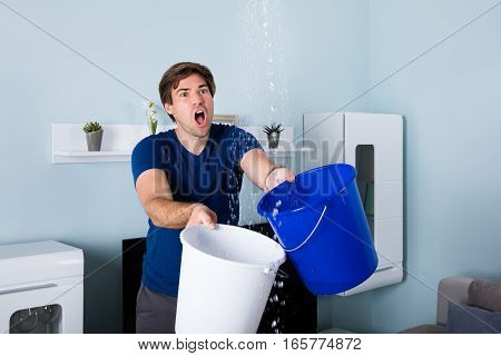 Young Male Worried Man Holding Bucket While Water Droplets Leaking From Ceiling