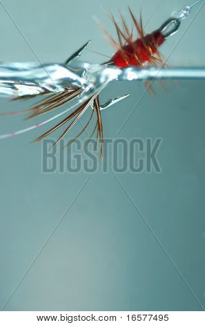 Red frances fly dragged through the water poster