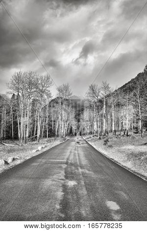 Black And White Photo Of A Rainy Road, Travel Concept
