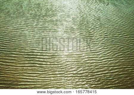 Green Abstract Natural Background Made Of Blurred Waves
