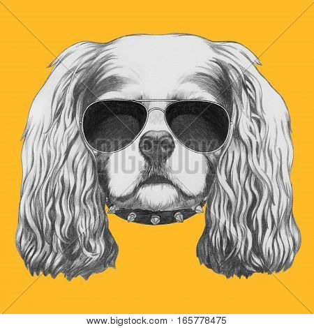 Portrait of Cavalier King Charles Spaniel with sunglasses and collar. Hand drawn illustration.