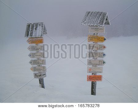 Picture of two frozen guideposts standing in deep snow