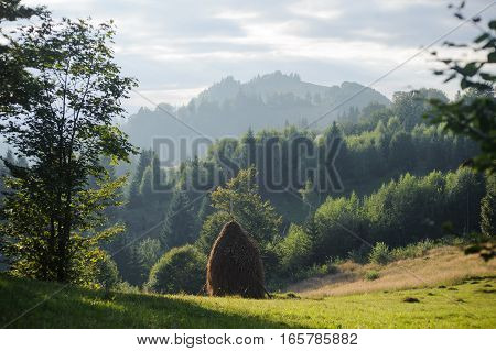 Mountains Landscape With Fresh Green Leaves And One Haycock