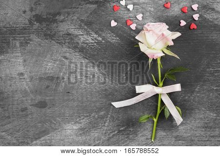 Pink Rose With White Ribbon On A Dark Background. Top View, Copy Space
