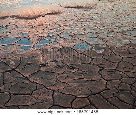 Dried clay and mud in the swamps of northern California