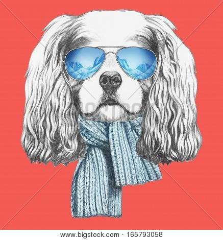 Portrait of Cavalier King Charles Spaniel with scarf and sunglasses. Hand drawn illustration.