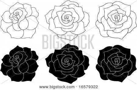 Rose Vector Illustration - solido e contorno