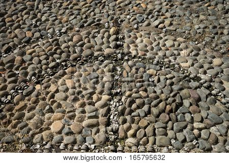 the remnaints of the bone inserts of a colonial cobblestone plaza floor in Casco Viejo Panama