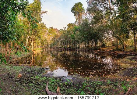 Dense jungle and wetland pond with old boat on a leash near Beng Melea Temple in Angkor Complex, Siem Reap, Cambodia. Beng Melea has been left largely unrestored with trees growing among the ruins.