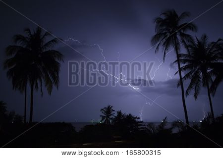 Lightning over tropical beach at night. Palms.