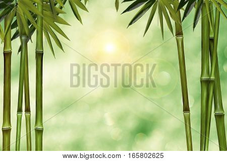 Blurred green background with bokeh lights and palm trees as a framework