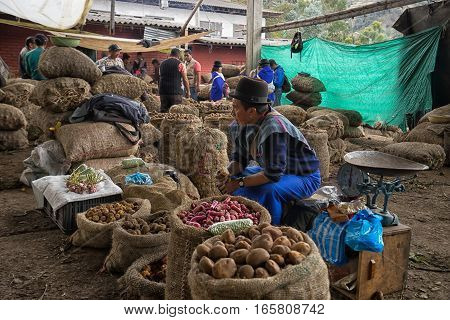September 6, 2016 Silvia, Colombia: a local indigenous vendor man sitting by potato bags waiting for customers in the Tuesday market