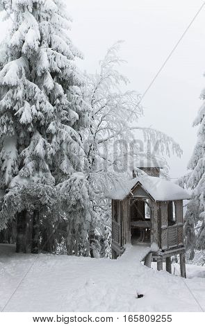beautiful spruce and gazebo covered with snow