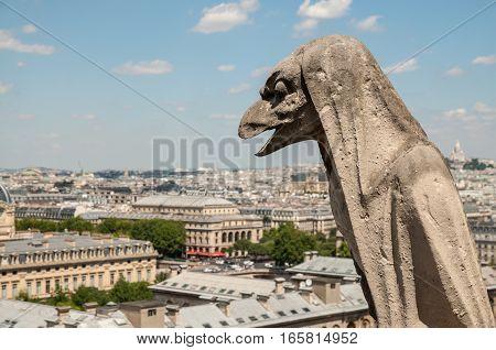 Element of Notre Dame de Paris, Paris, France