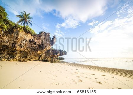 Paradise Beach With White Sand And Palms