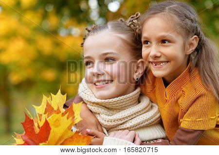 Portrait of two cute little sisters lokking at the distance in autumn park