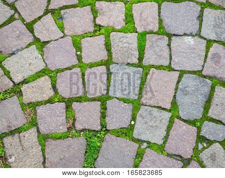 Square brick stone pattern on the street texture with moss at Italy