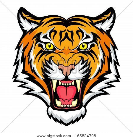 Tiger anger. Vector illustration of a tiger head.