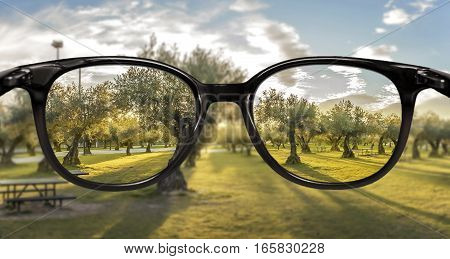 Clear vision through glasses over forest sunset