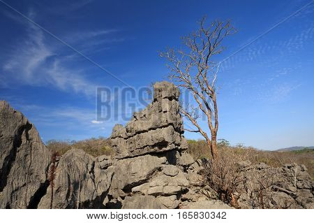 Tsingy Rock Formations In Ankarana, Madagascar