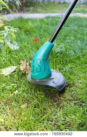 Worker mows a lawn mower. Green lawn mowercloseup.