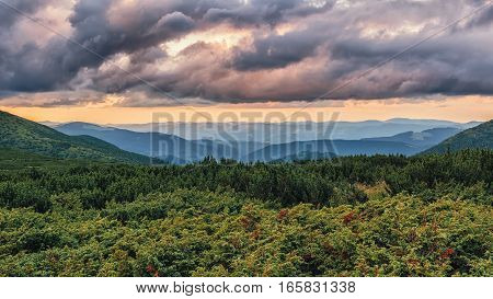 Picturesque and dramatic Carpathian mountains landscape sunset evening time panorama view Ukraine