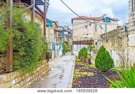 The Greenery In Old Safed