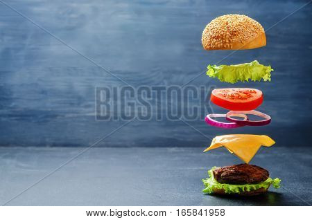 Organic flying burger on a dark background.